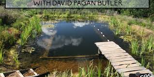 Natural looking in ground pools Building Your Own Natural Swimming Pools With David Pagan Butler pvp071 Apartment Therapy Natural Swimming Pools With David Pagan Butler pvp071 Diego