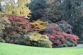 color garden. Woodland-garden-lower-pond-view-of-autumn-color- Color Garden