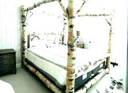 Canopy Bed With Storage Canopy Bed Frame Queen Metal Canopy Bed ...