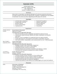 Example Of Executive Resume Stunning View R Human Resource Director Resume Hr Executive Resources Manual