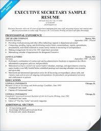 Secretary Resume Stunning Secretary Resume Examples Fresh Secretary Resumes Examples Pour
