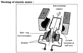 principle of motor a works on the principle that when a rectangular coil is placed in magnetic field and current passed through it electric brush diagram33 diagram