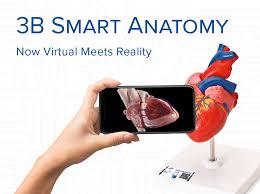 New 3b Smart Anatomy Medical Simulators Anatomical
