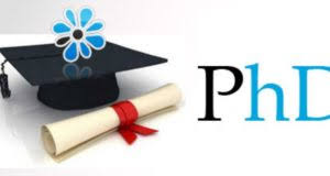 Phd Degree Phd Degree Archivos Business Cdk