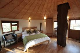 inside of simple tree houses. Treehouse Masters Interior Simple - Destroybmx Inside Of Tree Houses