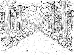 Small Picture Amazing Forest Coloring Pages 85 For Your Seasonal Colouring Pages
