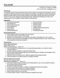 Resume Branding Statement Examples Stunning Summary Example For Resume Fresh Career Summary Sample Customer