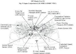 honda 1 6 vtec engine diagram michaelhannan co diagram of animal cell structure honda 1 6 vtec engine accord parts v 2 7 is