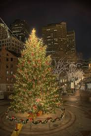 faneuil hall christmas tree lighting. a christmas tree at faneuil hall boston lighting e
