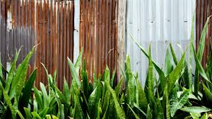 rusty at corrugated metal fence premium photo