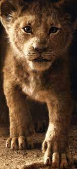 Lion iPhone 12 HD Wallpapers ...