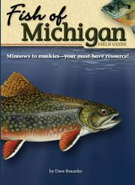 Fish Of Michigan Field Guide Fish Identification Guides