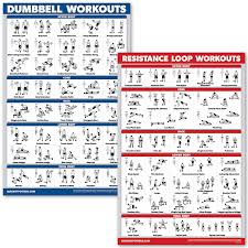 Quickfit 2 Pack Dumbbell Workouts Resistance Bands Loops Exercise Poster Set Laminated 2 Chart Set Dumbbell Exercise Routine And Resistance