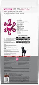 Labrador Retriever Dog Food Dog Food For Labs Eukanuba