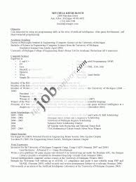 Empty Resume Format Enchanting Cv Example Best Sample Templates
