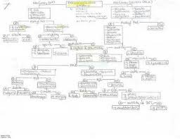 Identifying Unknown Bacteria Flowchart Fresh Flow Chart