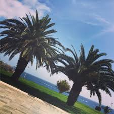 Aesthetic Holiday R G Aesthetics On Twitter Have You Booked Your Summer Holiday