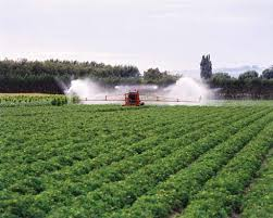 Irrigated Crops Water Resources Te Ara Encyclopedia Of New Zealand