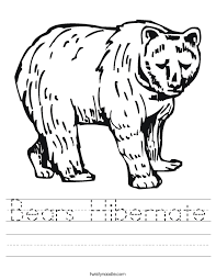 Bears Hibernate Worksheet - Twisty Noodle