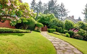 garden path stepping stones 03