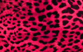Pink Leopard Print Wallpaper For Bedroom Pink Print Wallpaper