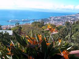 file panoramic view of funchal from madeira botanical garden jpg
