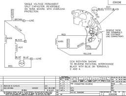 marathon electric motor wiring diagram problems unique lovely ac