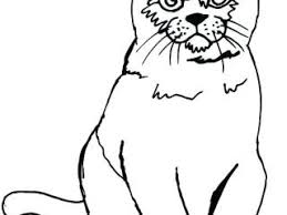Printable Cat Pictures Cat Color Page Printable Cat Coloring Pages