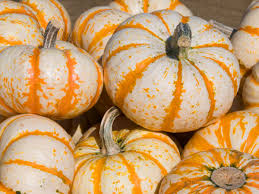 Pumpkin Varieties Chart 15 Common Types Of Squash And What To Do With Them Myrecipes