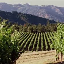 Image result for Copyright free Napa Valley Photos