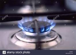 gas stove burner flame. focus, detail, gas flame, culinary range, cooking field, stove, kiln, burner, flame rim, flames, blue, gas, fire, stove burner .