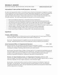 Executive Summary Resume Lovely Luxury Examples Professional Summary