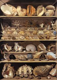Cabinet Of Wonders Cabinets Of Curiosity The Web As Wunderkammer The Appendix