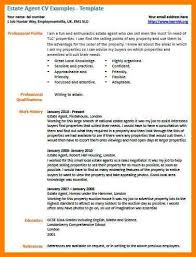 Estate Agent Cv 8 Estate Agents Cv Business Opportunity Program