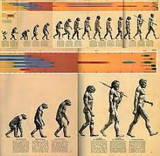 of progress the original of progress illustration from early man 1965 sp extended top and folded bottom
