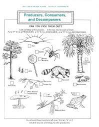 Ecosystems Worksheet Photos - Beatlesblogcarnival   Eyes ...