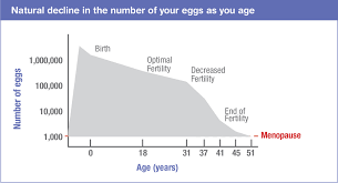 Fertility Age Chart Before Decision Aid