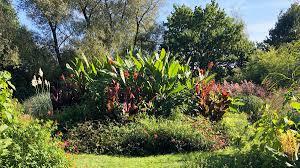 birmingham botanical gardens correspondence edition