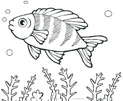 Goldfish Coloring Fish Template To Color Pages Printable For Kids