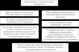 Проблемы развития малого бизнеса в России Курсовая работа Качественные особенности малого предприятия