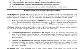 Designer Resume Example Designer Resume Creative Designer Resume