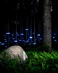 artistic outdoor lighting. artistic outdoor lighting photo 7 e