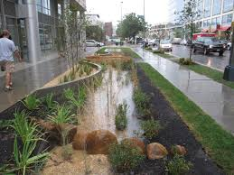 Small Picture 225 best Special swales images on Pinterest Rain garden