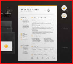 Best Resume Design best resume designs 100 apa example 39
