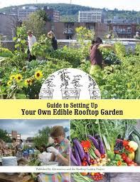 guide tour own edible rooftop garden