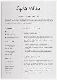 professional resume template proffesional resume templates