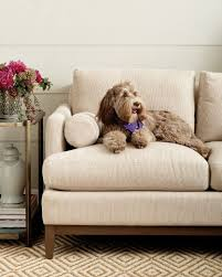 if you re looking for the best sofas for dogs we ve got a guide to pet friendly furniture and fabrics to help you pick the perfect piece