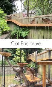 diy outdoor cat enclosure catio