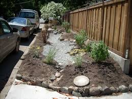 Small Picture Rain Gardens Other Simple 1st Steps 10000 Rain Gardens Project