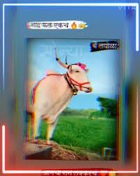 pruthviraj deshmukh - Author on ShareChat - मैत्री, मस्ती आणि शेअरचॅट 👌